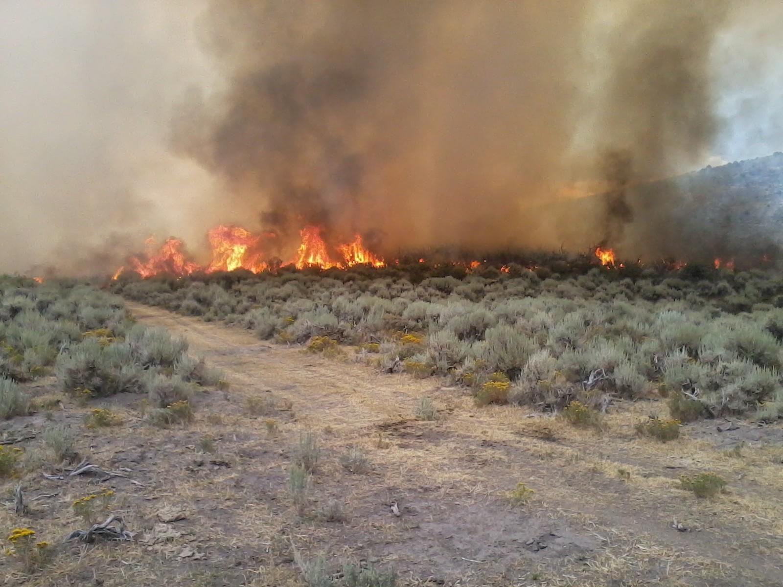 570 acre blazed contained near Eureka