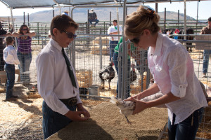 Now that another Eureka County Fair has come and gone, 4-H members can be very proud of themselves. Several livestock exhibits