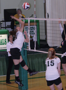 The Eureka County High girls' volleyball dream season came to a screeching halt last Friday.