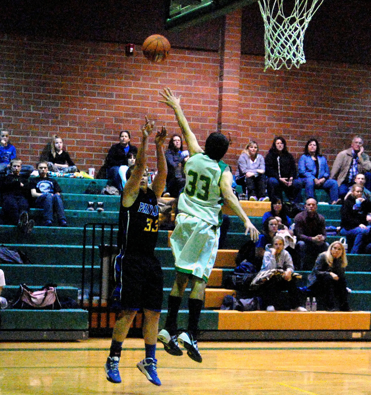 Vandals fall at home to Panthers