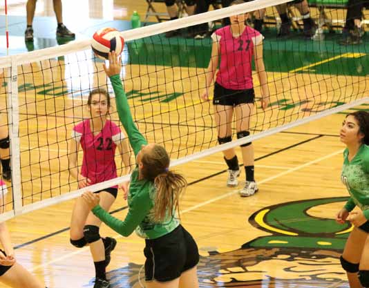 Lady Vandals fighting for playoff seeding
