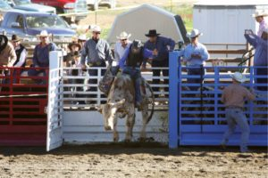 Courtesy photo - Eureka 8th graders Chace Green and Breyana Miller qualified for the National Jr. High School Rodeo Finals beginning June 19 in Lebanon, TN.