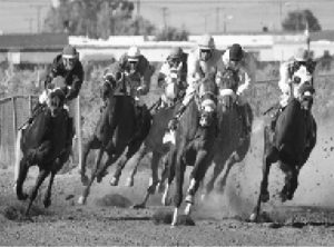 Courtesy photo -  Horse racing returns to White Pine County Fairgrounds, Aug. 20-21.