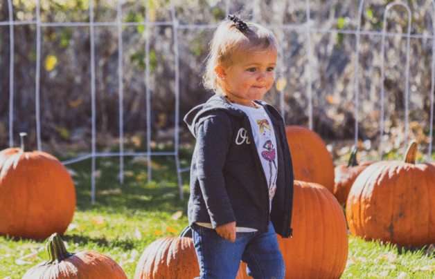 Pumpkin Picking in Eureka