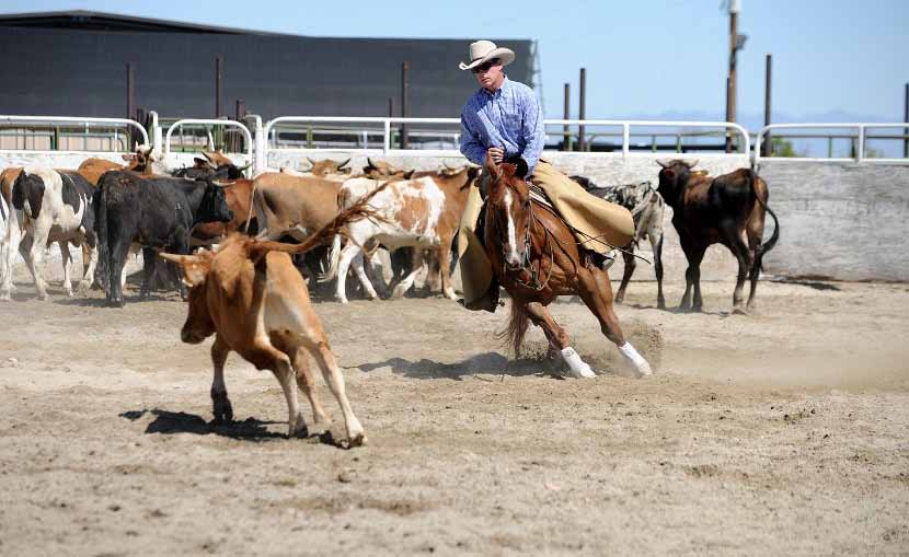 Annual county fair set for next week