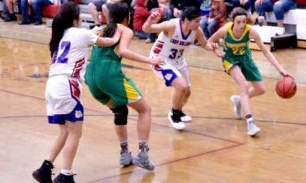 Vandal girls advance to state tournament; boys season ended