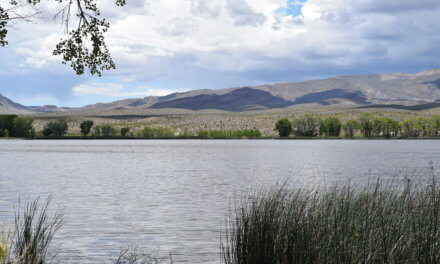 Travelers making use of free campsites at Pahranagat Lake