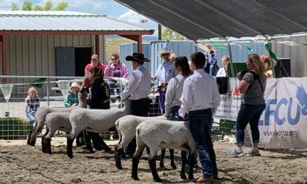 Eureka County Jr. Livestock Show and Sale Result
