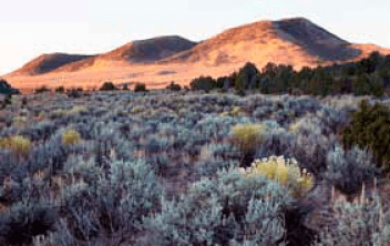 Nevada State Panel Upholds Permit for Huge Open Pit Mine