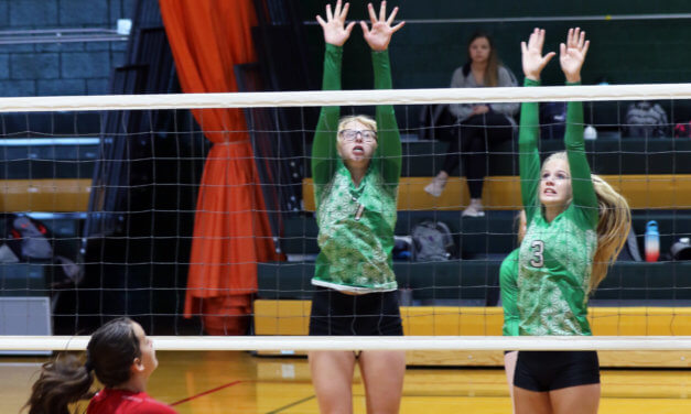 Volleyball Team Gets Win