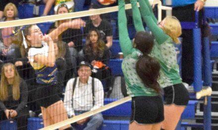 Eureka Girls Fall Short at Regional Tournament