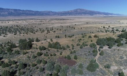 Nevada Tribes Slam State for Scrubbing Native History Document from Web